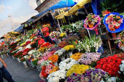 De Kleuren van de Bloemenmarkt bij de Bosporus