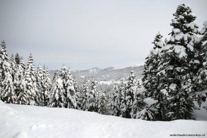 Winter in Uludag