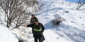 Erzincan schiet wilde dieren te hulp