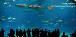 Nata Vega Aquarium Aqua Vega Ankara