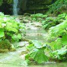 Erfelek Watervallen Turkije 03