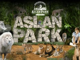 Foto: Aslan Park